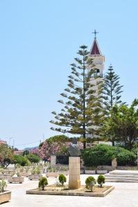 Tree in a town square Zante Town Greece